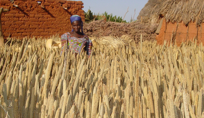 Woman farmer by IFDC Photography.png